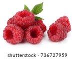 ripe raspberries with green... | Shutterstock . vector #736727959