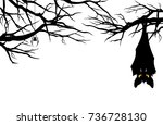 halloween theme evil bat... | Shutterstock .eps vector #736728130