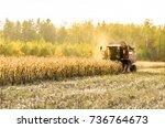 combine  harvesting of maize...   Shutterstock . vector #736764673