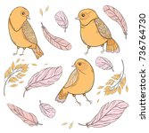 set cute vector  with birds and ... | Shutterstock .eps vector #736764730