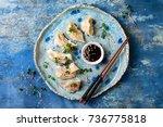 asian dumplings with soy sauce  ... | Shutterstock . vector #736775818