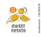 sweet potato isolated set. hand ... | Shutterstock .eps vector #736783678