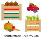 vector worldwide food shipping... | Shutterstock .eps vector #736797238