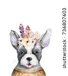 watercolor closeup portrait of... | Shutterstock . vector #736807603