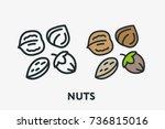 nuts vegetarian concept.... | Shutterstock .eps vector #736815016