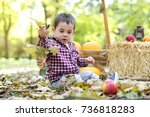 little boy playing in the park  | Shutterstock . vector #736818283