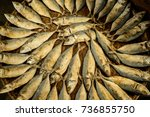 dry mackerel fish on the weave... | Shutterstock . vector #736855750