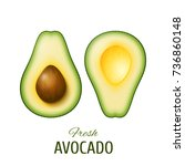 realistic two slices of ripe... | Shutterstock . vector #736860148