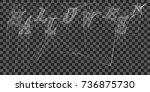 eps10.cobweb  isolated on black ... | Shutterstock .eps vector #736875730