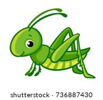 vector isolated cute green... | Shutterstock .eps vector #736887430