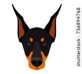 abstract doberman dog head.... | Shutterstock .eps vector #736894768