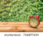 alarm clock in nature on a... | Shutterstock . vector #736897654