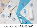 beauty concept flat lay.... | Shutterstock . vector #736919440