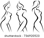 set of stylized silhouettes... | Shutterstock .eps vector #736920523
