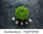 inscription world wooden... | Shutterstock . vector #736970944