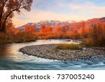 golden morning at the provo... | Shutterstock . vector #737005240