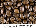 roasted coffee beans | Shutterstock . vector #737016250