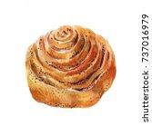 bun with poppy seeds.... | Shutterstock . vector #737016979