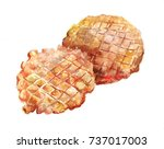 two round wafers baked in a... | Shutterstock . vector #737017003