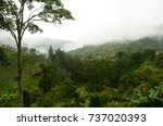view of fields and lush forest... | Shutterstock . vector #737020393