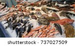 variety of sea fishes on the... | Shutterstock . vector #737027509