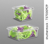 fresh green and purple salad... | Shutterstock .eps vector #737030929