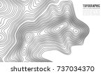 topographic map contour... | Shutterstock .eps vector #737034370