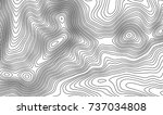 topographic map contour... | Shutterstock .eps vector #737034808