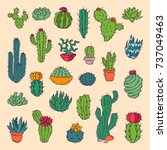 cactus home nature vector... | Shutterstock .eps vector #737049463