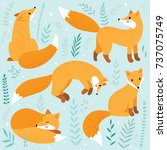 cute fox set  | Shutterstock .eps vector #737075749