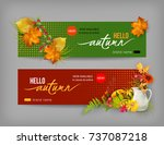 vector fall banner for web or... | Shutterstock .eps vector #737087218