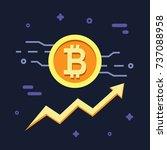 bitcoin growth concept. crypto... | Shutterstock .eps vector #737088958