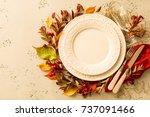 autumn  fall  or thanksgiving... | Shutterstock . vector #737091466