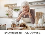 cheerful old woman cooking at... | Shutterstock . vector #737099458