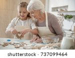 cheerful grandchild making... | Shutterstock . vector #737099464