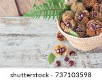 chestnuts in the basket on the... | Shutterstock . vector #737103598