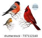 beautiful hand drawn vector...   Shutterstock .eps vector #737112160