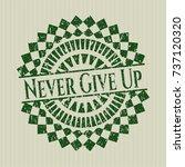 green never give up distress... | Shutterstock .eps vector #737120320