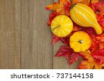Autumn Background With Gourds...
