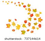 falling leaves isolated on... | Shutterstock . vector #737144614