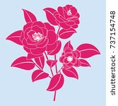 stylized camellia flower.... | Shutterstock .eps vector #737154748