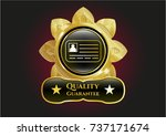 gold badge with identification ... | Shutterstock .eps vector #737171674