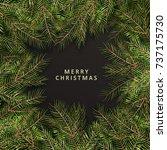 merry christmas  phrase.... | Shutterstock . vector #737175730