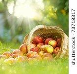 healthy organic apples in the... | Shutterstock . vector #73718317