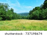 summer meadow and a mountain | Shutterstock . vector #737198674