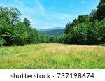 summer meadow and a mountain | Shutterstock . vector #737198674
