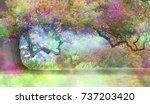 the fairies oak tree   big old... | Shutterstock . vector #737203420