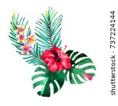 tropical bouquet. watercolour... | Shutterstock . vector #737224144
