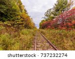 an old overgrown abandoned... | Shutterstock . vector #737232274