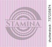 stamina pink emblem. vintage. | Shutterstock .eps vector #737235874